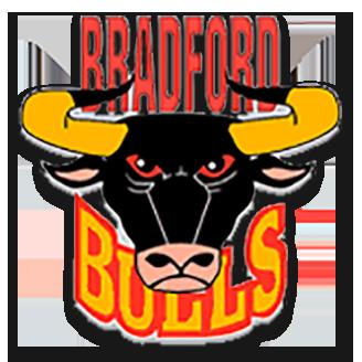 Bradford Bulls logo