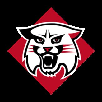 Davidson Basketball logo
