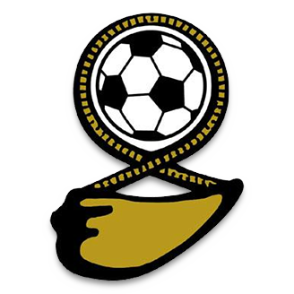 Fiji (National Football) logo