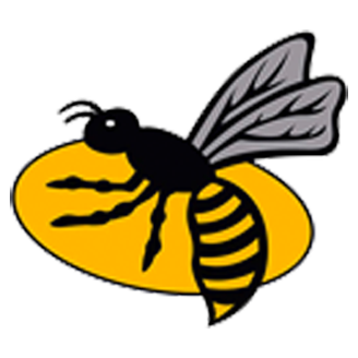 London Wasps logo
