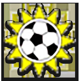 Namibia (National Football) logo