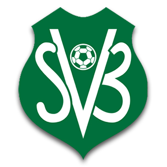Suriname (National Football) logo