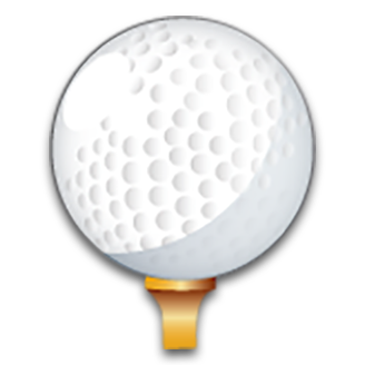Tiger Woods logo
