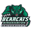 Binghamton Basketball logo