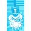 Citadel Football logo