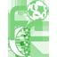 Comoros (National Football) logo
