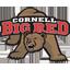 Cornell Basketball logo