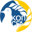 Cyprus (National Football) logo