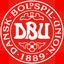 Denmark (National Football) logo