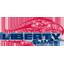 Liberty Basketball logo