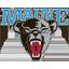 Maine Basketball logo