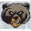 Montana Basketball logo