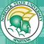 Norfolk State Basketball logo