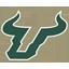 South Florida Bulls Football logo