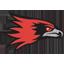 Southeast Missouri State Basketball logo