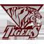 Texas Southern Football logo