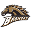 Western Michigan Football logo