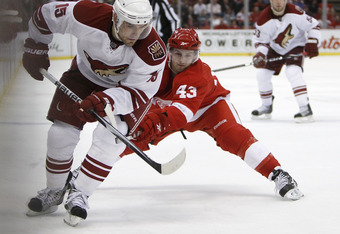 DETROIT - APRIL 20: Matthew Lombardi #15 of the Phoenix Coyotes tries to control the puck in front of Darren Helm #43 of the Detroit Red Wings during Game Four of the Western Conference Quarterfinals of the 2010 NHL Stanley Cup Playoffs on April 20, 2010