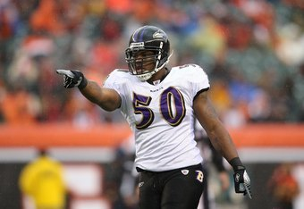 CINCINNATI - NOVEMBER 30:  Antwan Barnes #50 of the Baltimore Ravens makes a pointing gesture during their NFL game against the Cincinnati Bengals on November 30, 2008 at Paul Brown Stadium in Cincinnati, Ohio. The Ravens defeated the Bengals 34-3.(Photo