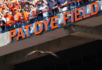 AUBURN, AL - OCTOBER 23:  The War Eagle of the Auburn Tigers flies down to Pat Dye Field before the game against the LSU Tigers at Jordan-Hare Stadium on October 23, 2010 in Auburn, Alabama.  (Photo by Kevin C. Cox/Getty Images)