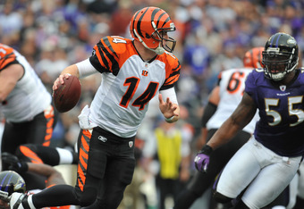BALTIMORE - NOVEMBER 20:  Andy Dalton #14 of the Cincinnati Bengals scrambles against the Baltimore Ravens at M&T Bank Stadium on November 20, 2011 in Baltimore, Maryland. The Ravens defeated the Bengals 31-24. (Photo by Larry French/Getty Images)