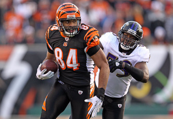 CINCINNATI, OH - JANUARY 01:  Jermaine Gresham #84 of the Cincinnati Bengals runs with the ball and tries to avoid the defensive pressure of Dannell Ellerbe #59 of the Baltimore Ravens during the NFL game at Paul Brown Stadium on January 1, 2012 in Cincin