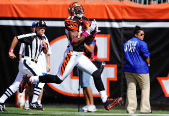 CINCINNATI, OH - OCTOBER 10:  Terrell Owens #81 of the Cincinnati Bengals pulls in a pass to complete a 43-yard touchdown play against the Tampa Bay Buccaneers in the first quarter at Paul Brown Stadium on October 10, 2010 in Cincinnati, Ohio.  (Photo by