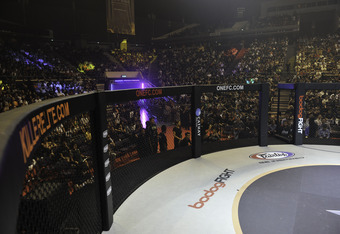The ONE FC cage, where Butler will be making his MMA debut
