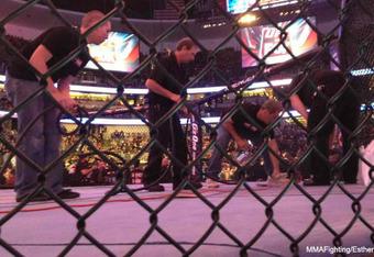 photo from MMAFighting.com