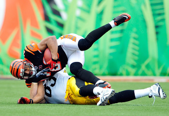 CINCINNATI, OH - NOVEMBER 13:  Leon Hall #29 of the Cincinnati Bengals intecepts a pass intended for Heath Miller #83 of the Pittsburgh Steelers during play at Paul Brown Stadium on November 13, 2011 in Cincinnati, Ohio.  (Photo by Grant Halverson/Getty I