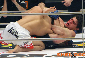 Diaz hits the gogo. Photo by Dave Mandel for Sherdog.com