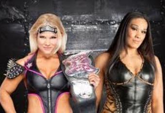 Divas' Championship Match.