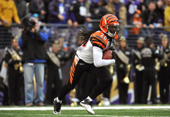 BALTIMORE, MD - JANUARY 2:  Reggie Nelson #20 of the Cincinnati Bengals returns an endzone interception against the Baltimore Ravens at M&T Bank Stadium on January 2, 2011 in Baltimore, Maryland. The Ravens defeated the Bengals 13-6. (Photo by Larry Frenc