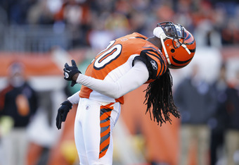 CINCINNATI, OH - DECEMBER 24: Reggie Nelson #20 of the Cincinnati Bengals celebrates after a sack against the Arizona Cardinals at Paul Brown Stadium on December 24, 2011 in Cincinnati, Ohio. The Bengals defeated the Cardinals 23-16. (Photo by Joe Robbins