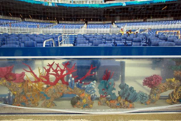 Marlins park team swings and misses with fish tank and for Marlins fish tank