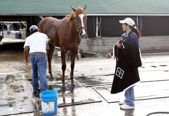 LOUISVILLE, KY - APRIL 29:  Dullahan, held by Yolanda Cordoso and groomed by Cesar Abrego, is bathed after the morning excercise session in preparation for the 138th Kentucky Derby at Churchill Downs on April 29, 2012 in Louisville, Kentucky.  (Photo by M