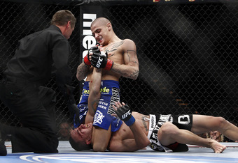 Courtesy of the MMA Kingdom