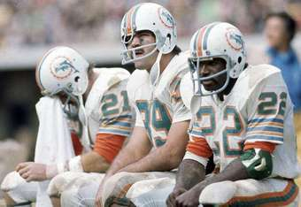 1972-dolphins_crop_340x234