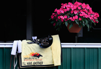 BALTIMORE, MD - MAY 16: The tack of I'll Have Another sits outside the barn after the horse trained at Pimlico Race Course on May 16, 2012 in Baltimore, Maryland.  (Photo by Rob Carr/Getty Images)
