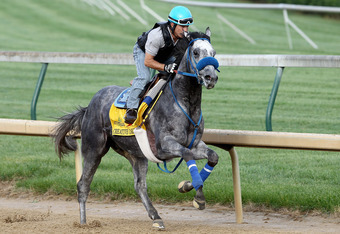 LOUISVILLE, KY - APRIL 30:  Creative Cause is riden on the track during the morning excercise session in preparation for the 138th Kentucky Derby at Churchill Downs on April 30, 2012 in Louisville, Kentucky.  (Photo by Matthew Stockman/Getty Images)