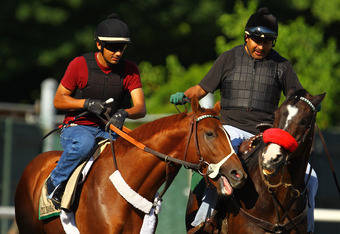 ELMONT, NY - JUNE 03:  Triple Crown Hopefull I'll Have Another walks on the track with exercise rider Jonny Garcia and Stable Pony Lava Man during a morning workout at Belmont Park on June 3, 2012 in Elmont, New York.  (Photo by Al Bello/Getty Images)