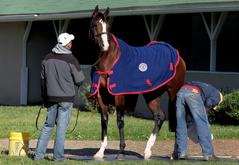 LOUISVILLE, KY - APRIL 27:  Union Rags, held by Luis Aguirre and groomed by Eduardo Cruz, is bathed after the morning excercise session in preparation for the 138th Kentucky Derby at Churchill Downs on April 27, 2012 in Louisville, Kentucky.  (Photo by Ma