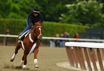 ELMONT, NY - JUNE 04:  Triple Crown hopefull I'll Have Another gallops with exercise rider Jonny Garcia up during a morning workout at Belmont Park on June 4, 2012 in Elmont, New York.  (Photo by Al Bello/Getty Images)