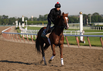 ELMONT, NY - JUNE 08:  Dullahan trains on the track  in preparation for the 144th Belmont Stakes at Belmont Park on June 8, 2012 in Elmont, New York.  (Photo by Rob Carr/Getty Images)