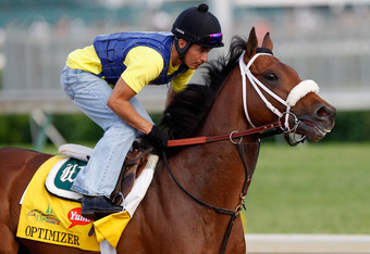LOUISVILLE, KY - MAY 03: Optimizer trains on the track in preparation for the 138th Kentucky Derby at Churchill Downs on May 3, 2012 in Louisville, Kentucky.  (Photo by Rob Carr/Getty Images)