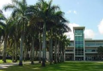 Imagine the University of Miami's on campus stadium, surrounded by palm trees