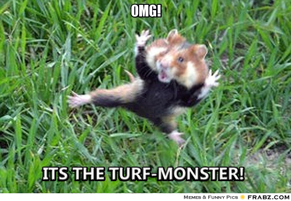 Turfmonster_original