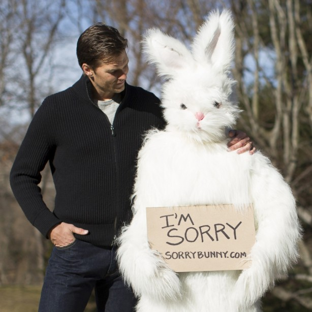 Brady-and-the-sorry-bunny-614x614_original
