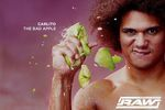 Carlito_crop_150x100