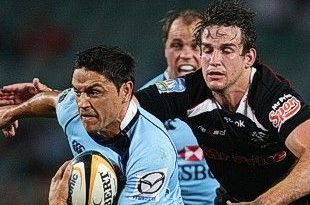 The Super 14 Sharks: Referee Sinks